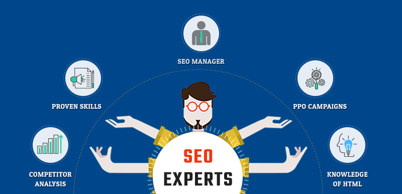 Search Engine Optimization Experts -semidot infotech