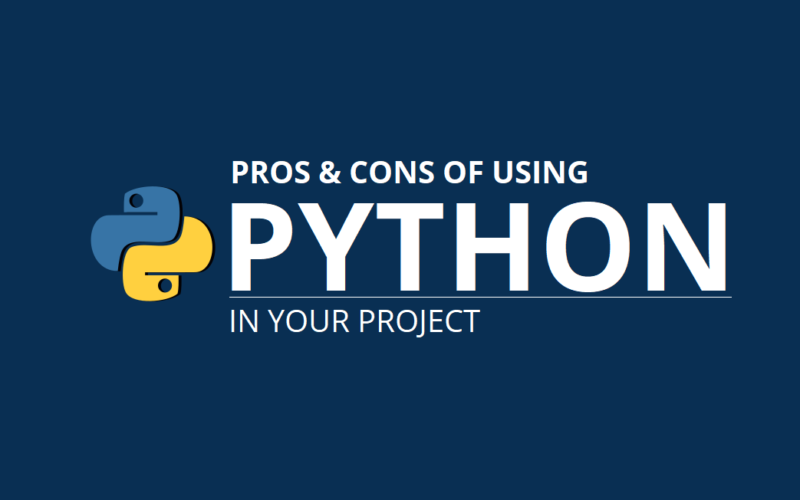 Pros and cons using Python in project
